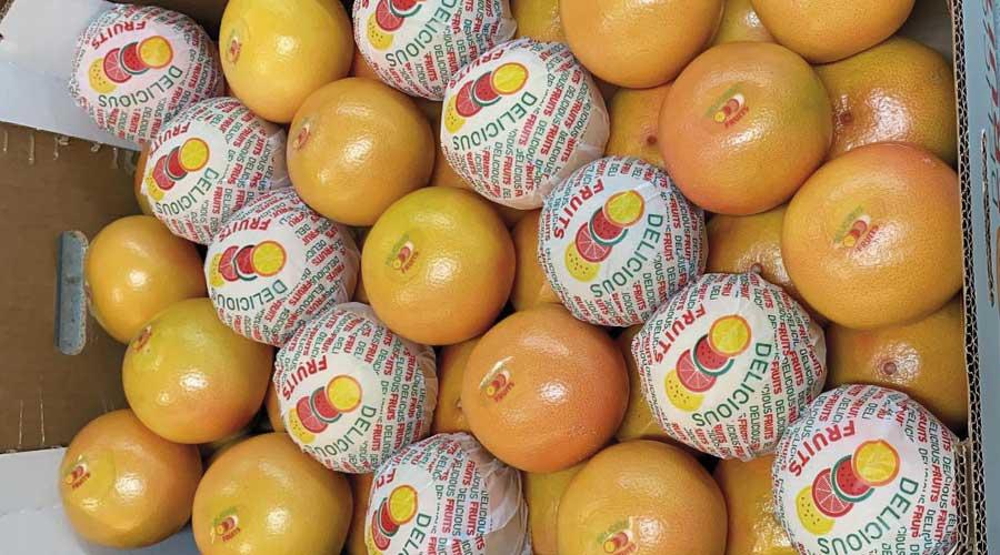 Delicious Fruits Pomelos